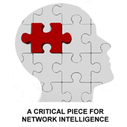 A Critical Piece for Network Intelligence